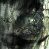 The Waltz of the Monsters, Yann Tiersen