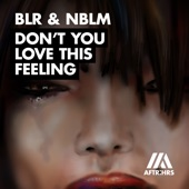 BLR & NBLM - Don't You Love This Feeling