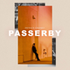 Patrick Droney - Passerby artwork