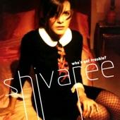 Shivaree - I Will Go Quietly