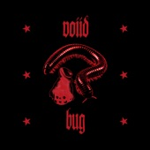 Voiid - Bug