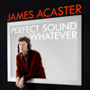 James Acaster - Perfect Sound Whatever  artwork