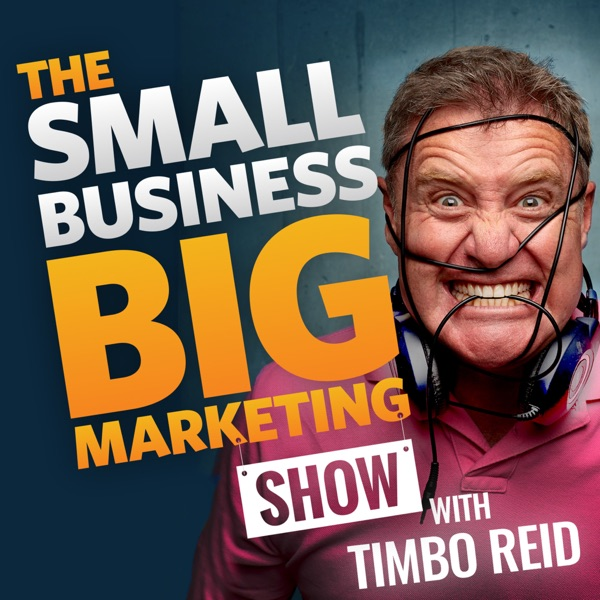 The Small Business Big Marketing Show | Insanely Effective