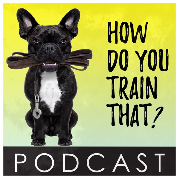 How Do You Train That? – Podcast – Podtail