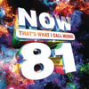 Various Artists - Now That's What I Call Music! Vol. 81 artwork