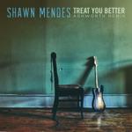 songs like Treat You Better