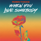 When You Love Somebody - Robin Thicke