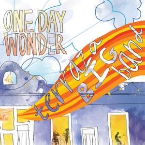 One Day Wonder