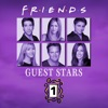 Friends, The One With All the Guest Stars, Vol. 1 - Synopsis and Reviews