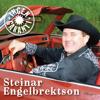 Steinar Engelbrektson - Berre du veit artwork