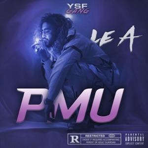 PMU - Single