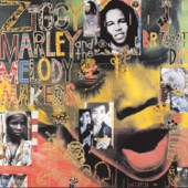 Ziggy Marley & The Melody Makers - Problems