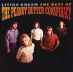 The Peanut Butter Conspiracy - Why Did I Get So High