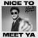 Nice to Meet Ya - Niall Horan - Niall Horan