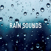 [Download] Relaxing Rain Sound MP3