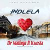 Dr Malinga - Indlela (feat. Kwesta) artwork
