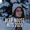 Various Artists - Deep House Hits 2020