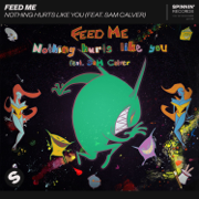Nothing Hurts Like You (feat. Sam Calver) - Feed Me