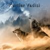 Kurtlar Vadisi - Pusu 2003 artwork