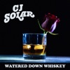 Watered Down Whiskey - Single