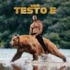 Testo E by SSIO iTunes Track 3
