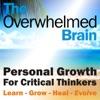 The Overwhelmed Brain