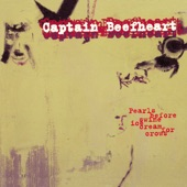 Captain Beefheart - Fallin' Ditch