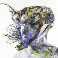 Bibio - Curls artwork