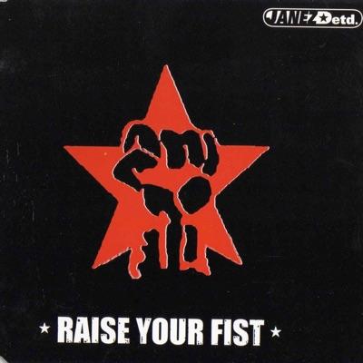 Raise Your Fist - Single - Janez Detd