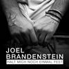 Joel Brandenstein - Halt mich noch einmal fest Grafik