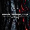 Various Artists - Sound of the Raging Steppe artwork