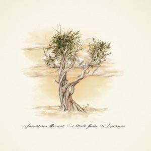 Jamestown Revival - Bluebird