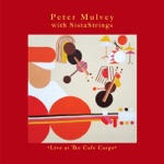 Peter Mulvey & SistaStrings - It Can Get You By