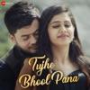 Tujhe Bhool Pana