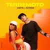 Anitta & Mc Kevinho - Terremoto  arte