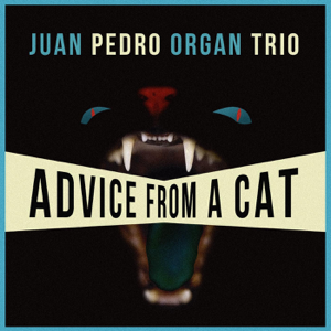 Juan Pedro Organ Trio - Advice from a Cat
