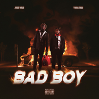 Juice WRLD & Young Thug - Bad Boy artwork