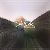 Carlos Arzate - Misunderstood Sun