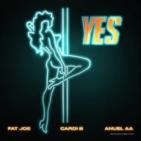 YES (feat. Dre) - Single - Fat Joe, Cardi B & Anuel AA