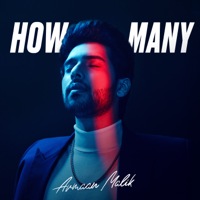 Armaan Malik - How Many