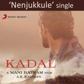 Nenjukkule Feat. Shakthisree Gopalan [From Kadal ]  A. R. Rahman - A. R. Rahman