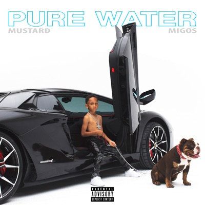 Pure Water - Single MP3 Download