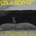 New Zealand Top 10 Dance Songs - Giant - Calvin Harris, Rag'n'Bone Man