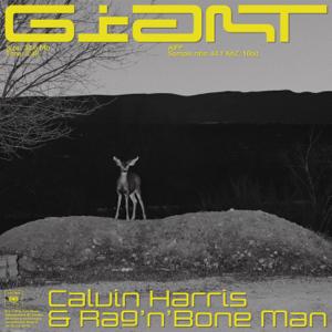descargar bajar mp3 Giant Calvin Harris, Rag'n'Bone Man