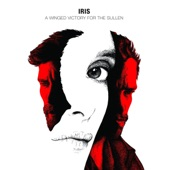 A Winged Victory for the Sullen - Galerie (Taken from the Music for the Motion Picture IRIS)