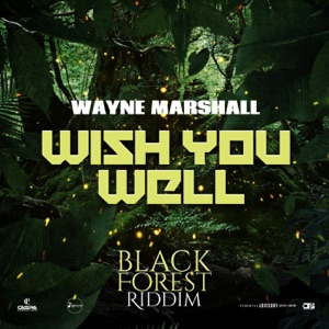 Wish You Well - Single Mp3 Download