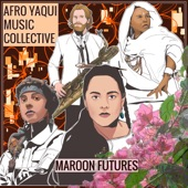 Afro Yaqui Music Collective - We Refuse to Be Used and Abused
