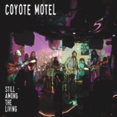 Coyote Motel - Down in Chulahoma (Live)