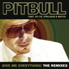 Give Me Everything The Remixes feat Ne Yo Afrojack Nayer