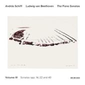 Piano Sonata No. 20 in G, Op. 49, No. 2: II. Tempo di Menuetto artwork
